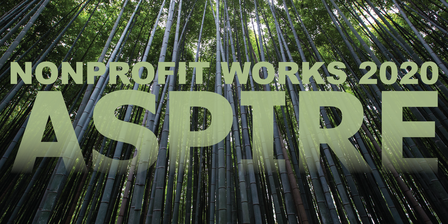 The words Nonprofit Works 2020 ASPIRE on a background of bamboo